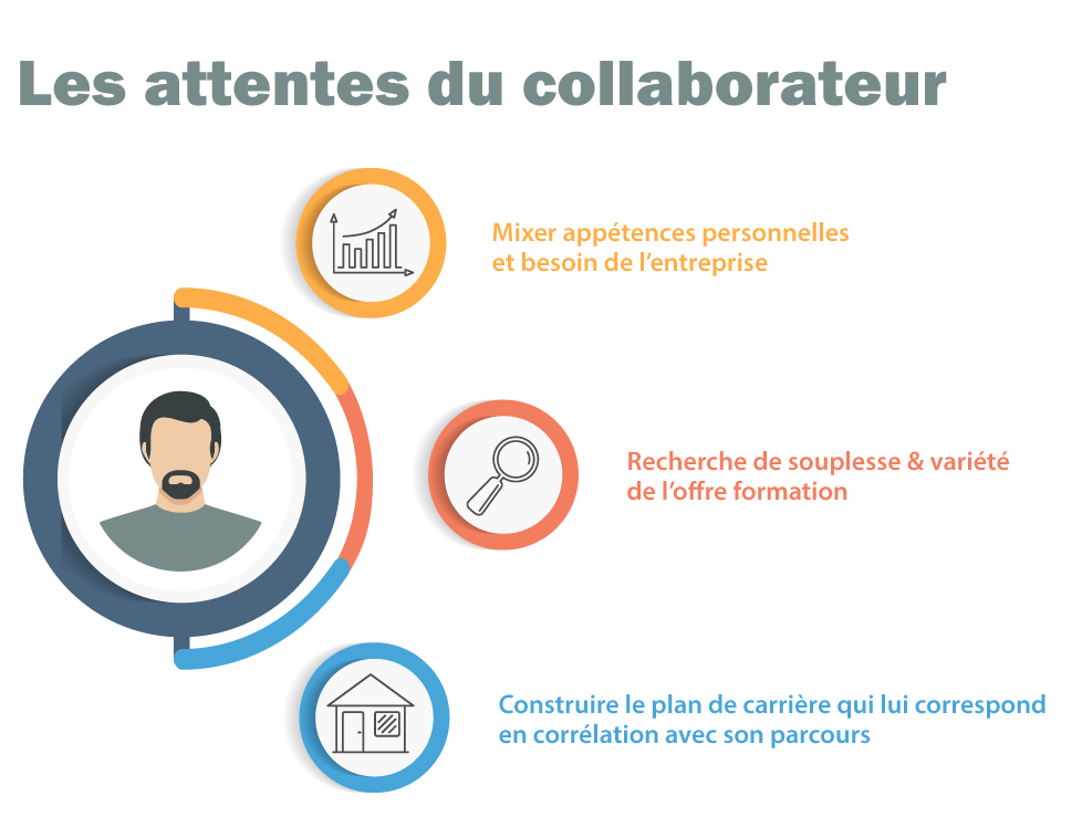 Formation attentes collaborateur